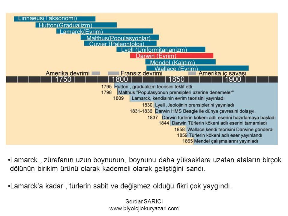 1.DARWİN'İN CANLILAR HAKKINDAKİ GÖRÜŞÜ 2.POPULASYONLARIN EVRİMİ 3.TÜRLERİN KÖKENİ Serdar SARICI www.biyolojiokuryazari.com
