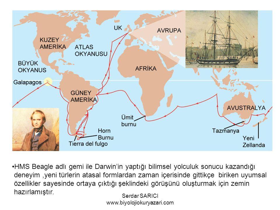 HMS Beagle adlı gemi ile Darwin'in yaptığı bilimsel yolculuk sonucu kazandığı deneyim,yeni türlerin atasal formlardan zaman içerisinde gittikçe biriken uyumsal özellikler sayesinde ortaya çıktığı şeklindeki görüşünü oluşturmak için zemin hazırlamıştır.