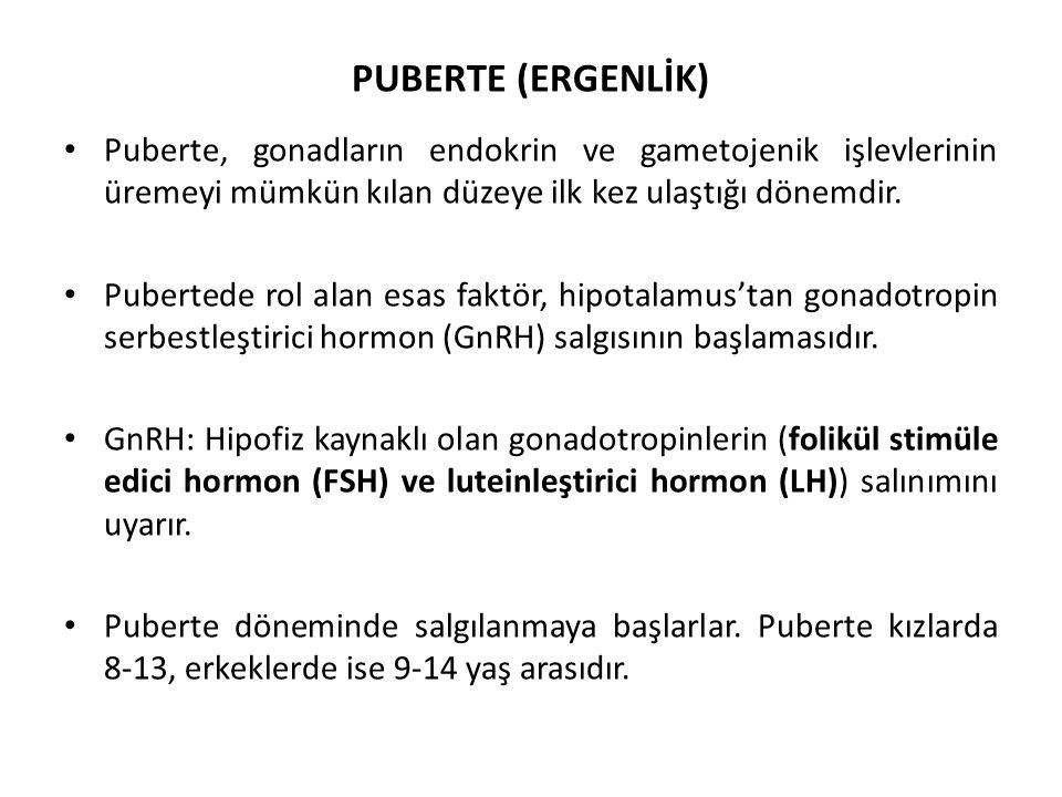 PUBERTE (ERGENLİK) Puberte, gonadların endokrin ve gametojenik işlevlerinin üremeyi mümkün kılan düzeye ilk kez ulaştığı dönemdir. Pubertede rol alan