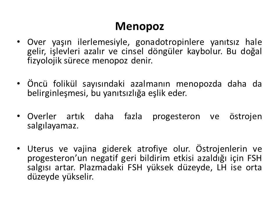 Menopoz Over yaşın ilerlemesiyle, gonadotropinlere yanıtsız hale gelir, işlevleri azalır ve cinsel döngüler kaybolur. Bu doğal fizyolojik sürece menop