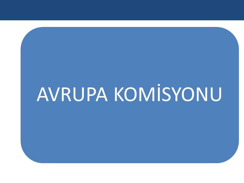 AVRUPA KOMİSYONU