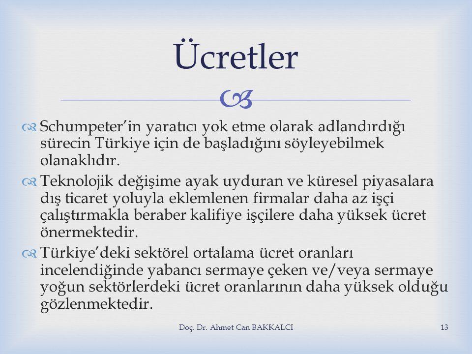   Schumpeter'in yaratıcı yok etme olarak adlandırdığı sürecin Türkiye için de başladığını söyleyebilmek olanaklıdır.  Teknolojik değişime ayak uydu