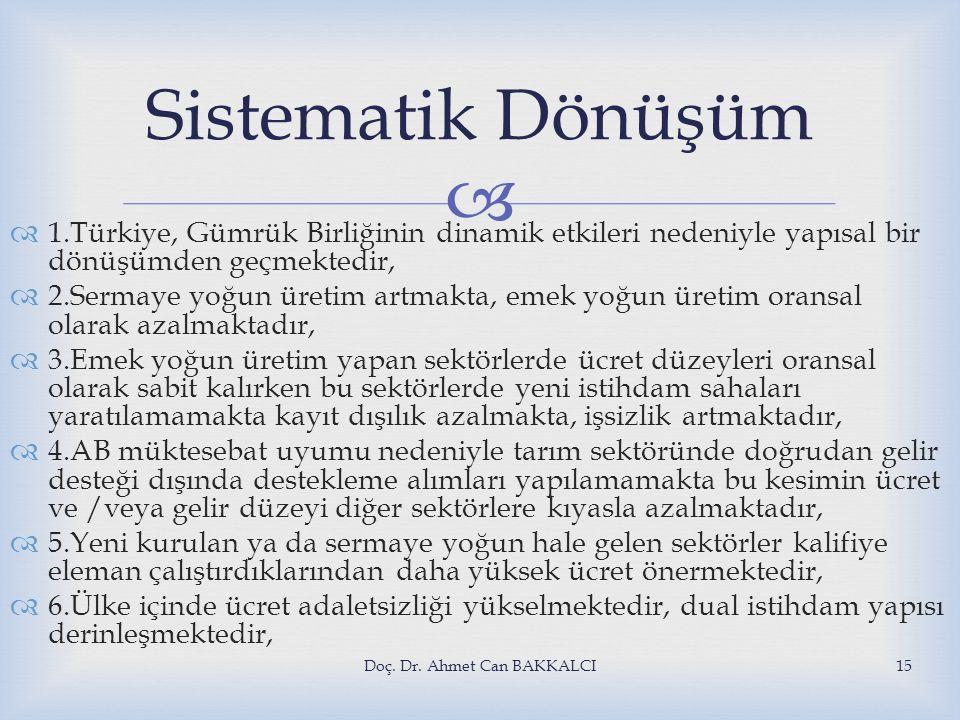   1.Türkiye, Gümrük Birliğinin dinamik etkileri nedeniyle yapısal bir dönüşümden geçmektedir,  2.Sermaye yoğun üretim artmakta, emek yoğun üretim o