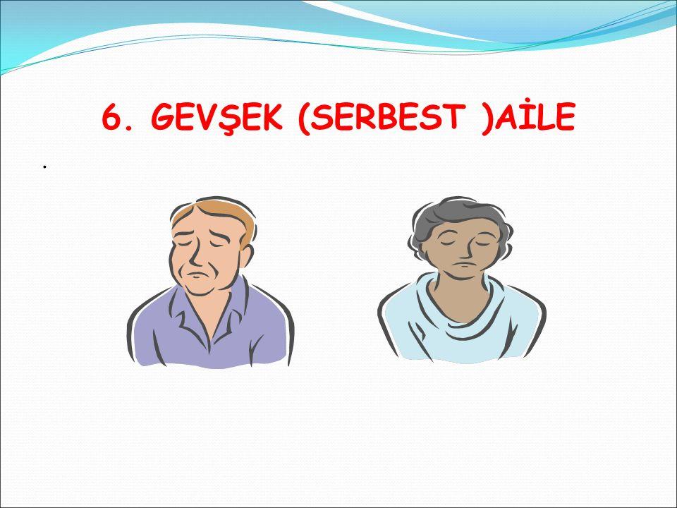 6. GEVŞEK (SERBEST )AİLE.