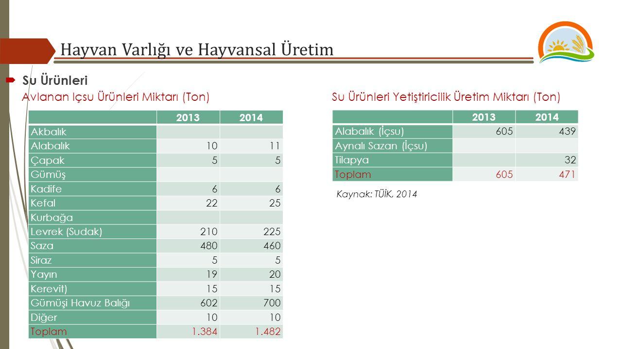 Hayvan Varlığı ve Hayvansal Üretim Kaynak: TÜİK, 2014  Su Ürünleri Avlanan Içsu Ürünleri Miktarı (Ton) Su Ürünleri Yetiştiricilik Üretim Miktarı (Ton