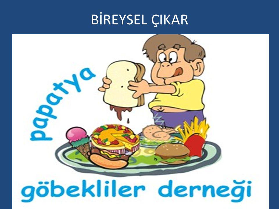 BİREYSEL ÇIKAR