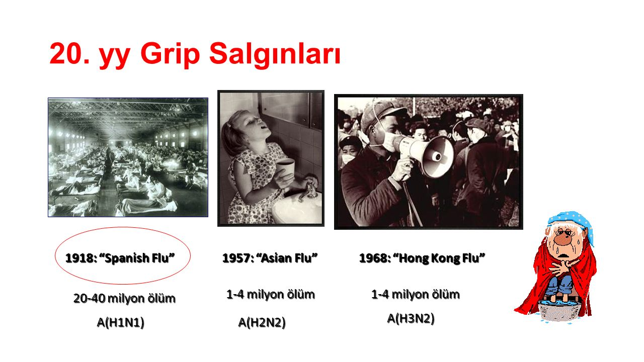 "20. yy Grip Salgınları A(H2N2) 1-4 milyon ölüm 1957: ""Asian Flu"" 1-4 milyon ölüm 1968: ""Hong Kong Flu"" 1918: ""Spanish Flu"" 20-40 milyon ölüm A(H1N1) A"
