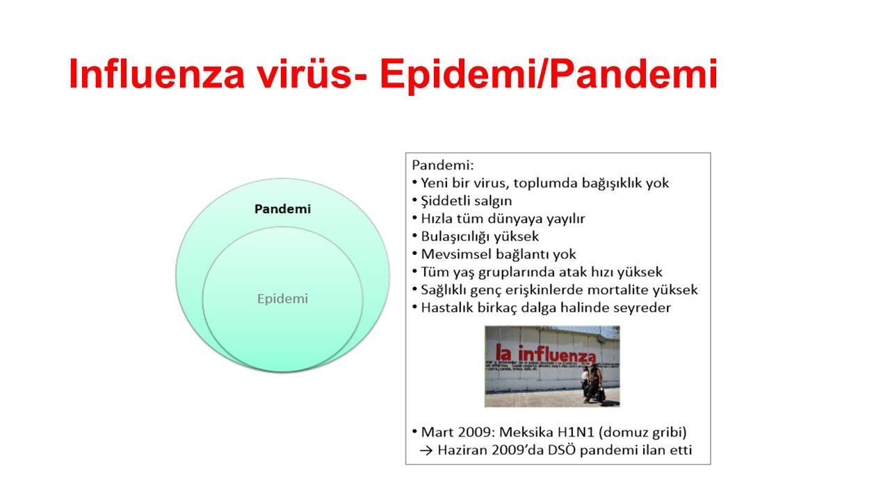 Influenza virüs- Epidemi/Pandemi