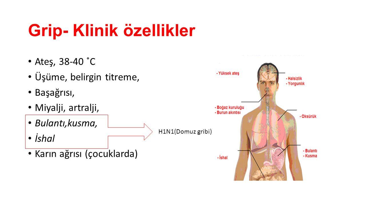 Grip- Klinik özellikler Ateş, 38-40 ˚C Üşüme, belirgin titreme, Başağrısı, Miyalji, artralji, Bulantı,kusma, İshal Karın ağrısı (çocuklarda) H1N1(Domu