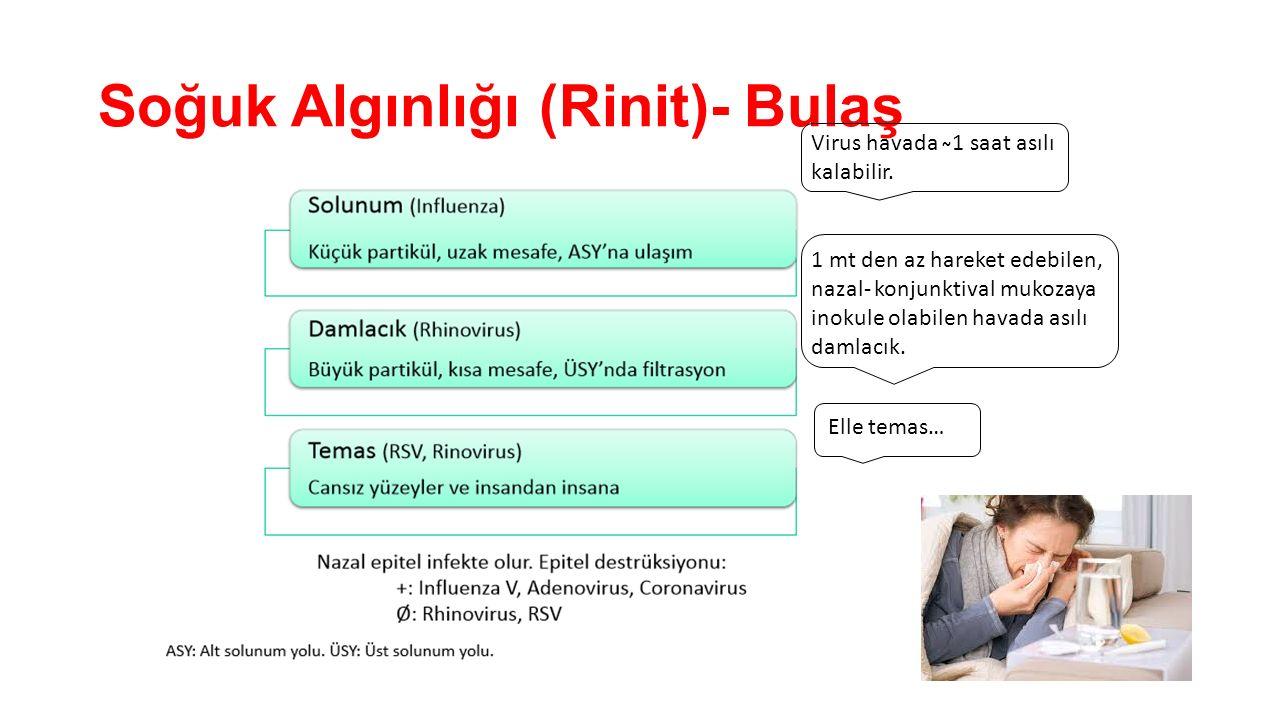 Soğuk Algınlığı (Rinit)- Bulaş Virus havada ̴1 saat asılı kalabilir. 1 mt den az hareket edebilen, nazal- konjunktival mukozaya inokule olabilen havad