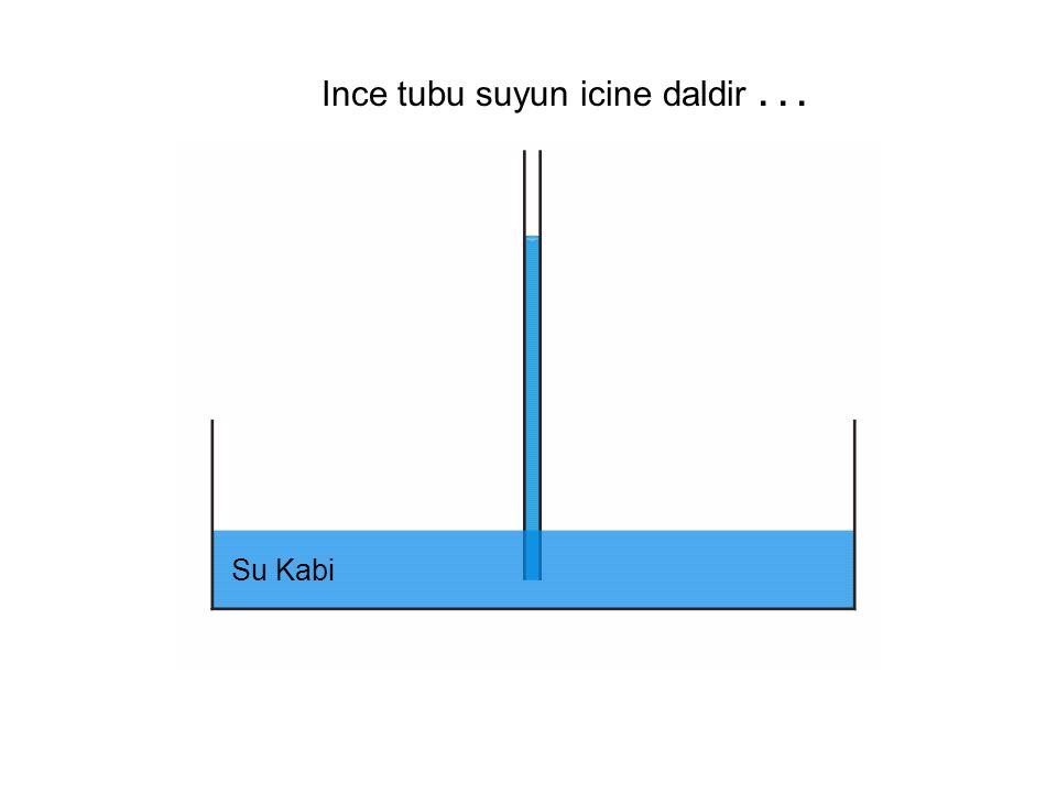 Su Kabi Ince tubu suyun icine daldir...