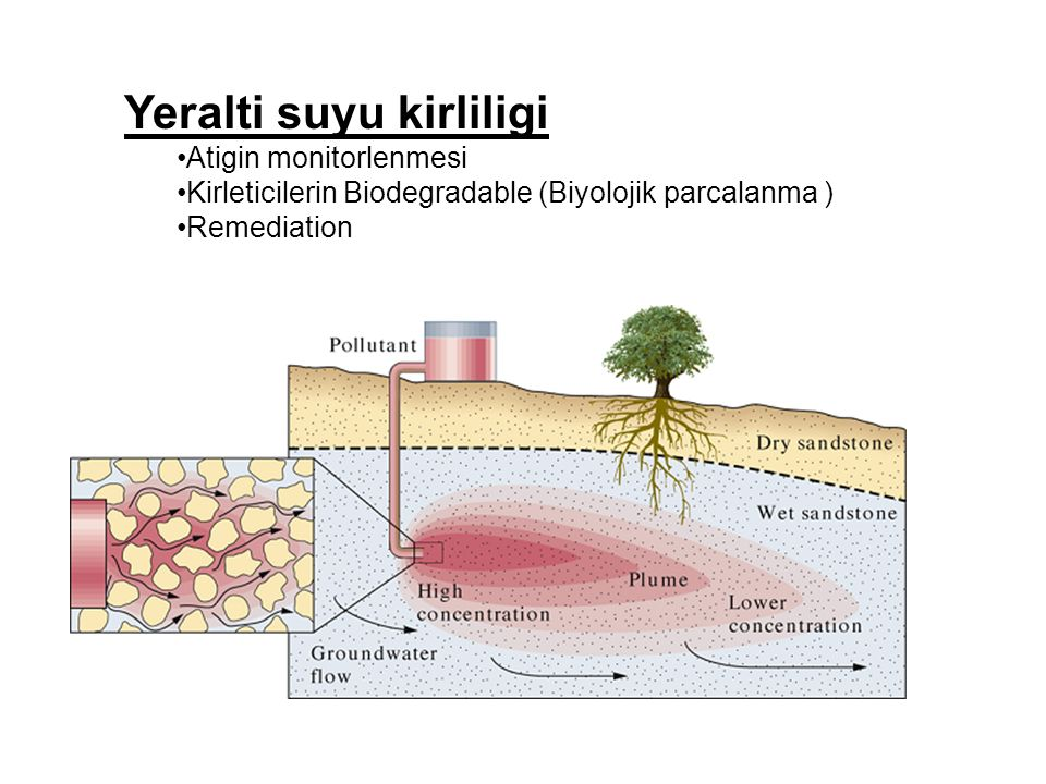 Yeralti suyu kirliligi Atigin monitorlenmesi Kirleticilerin Biodegradable (Biyolojik parcalanma ) Remediation