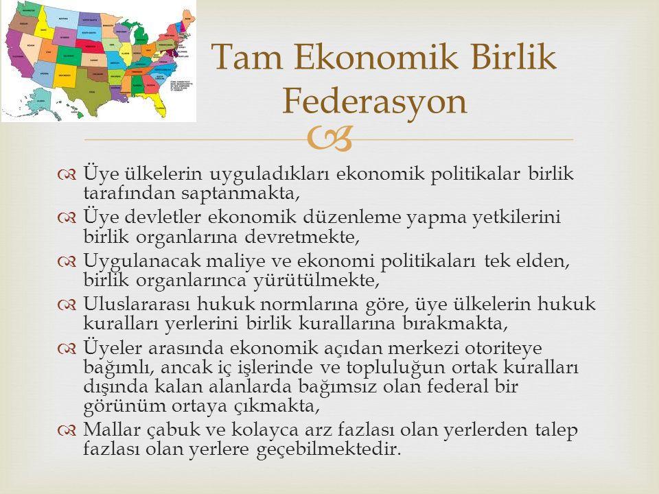   Üye ülkelerin uyguladıkları ekonomik politikalar birlik tarafından saptanmakta,  Üye devletler ekonomik düzenleme yapma yetkilerini birlik organlarına devretmekte,  Uygulanacak maliye ve ekonomi politikaları tek elden, birlik organlarınca yürütülmekte,  Uluslararası hukuk normlarına göre, üye ülkelerin hukuk kuralları yerlerini birlik kurallarına bırakmakta,  Üyeler arasında ekonomik açıdan merkezi otoriteye bağımlı, ancak iç işlerinde ve topluluğun ortak kuralları dışında kalan alanlarda bağımsız olan federal bir görünüm ortaya çıkmakta,  Mallar çabuk ve kolayca arz fazlası olan yerlerden talep fazlası olan yerlere geçebilmektedir.