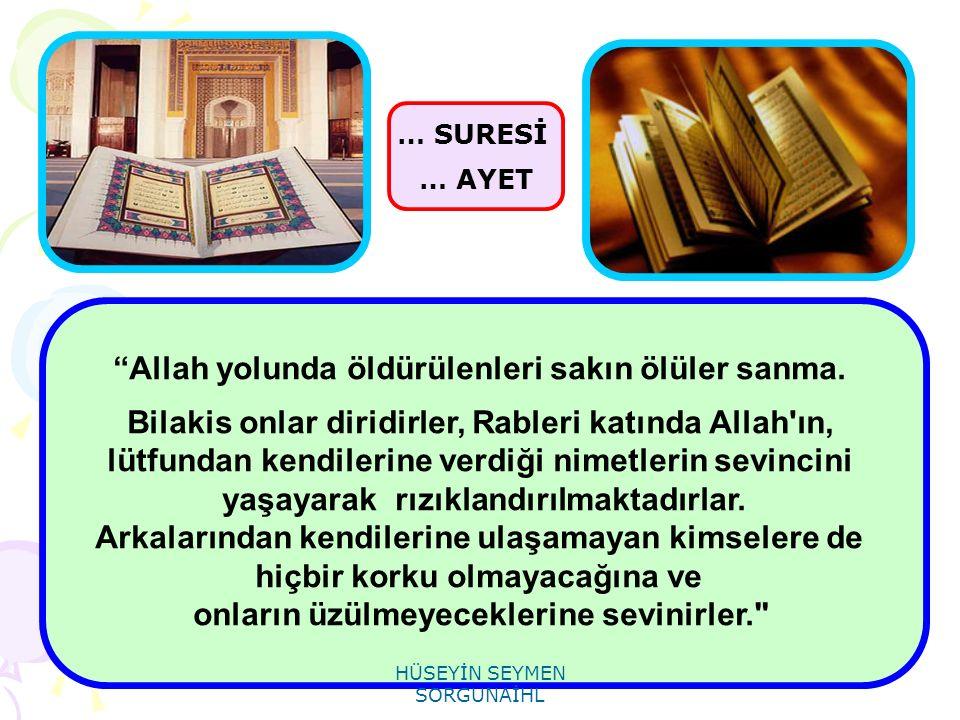 """""""Allah yolunda öldürülenleri sakın ölüler sanma. Bilakis onlar diridirler, Rableri katında Allah'ın, lütfundan kendilerine verdiği nimetlerin sevincin"""