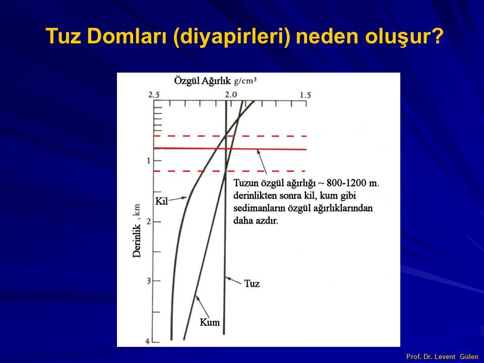 Tuz Domları (diyapirleri) neden oluşur? Prof. Dr. Levent Gülen