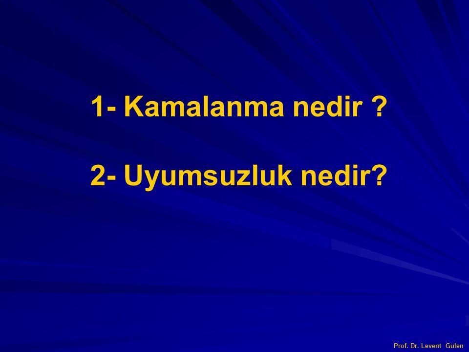 1- Kamalanma nedir ? 2- Uyumsuzluk nedir? Prof. Dr. Levent Gülen
