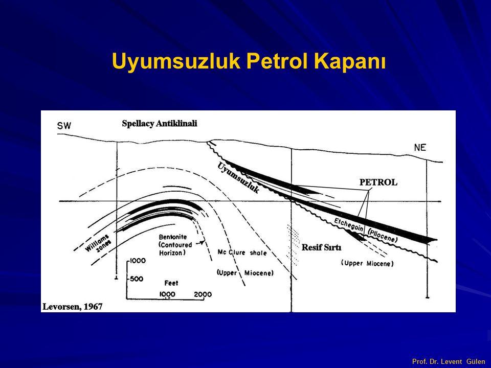Prof. Dr. Levent Gülen Uyumsuzluk Petrol Kapanı