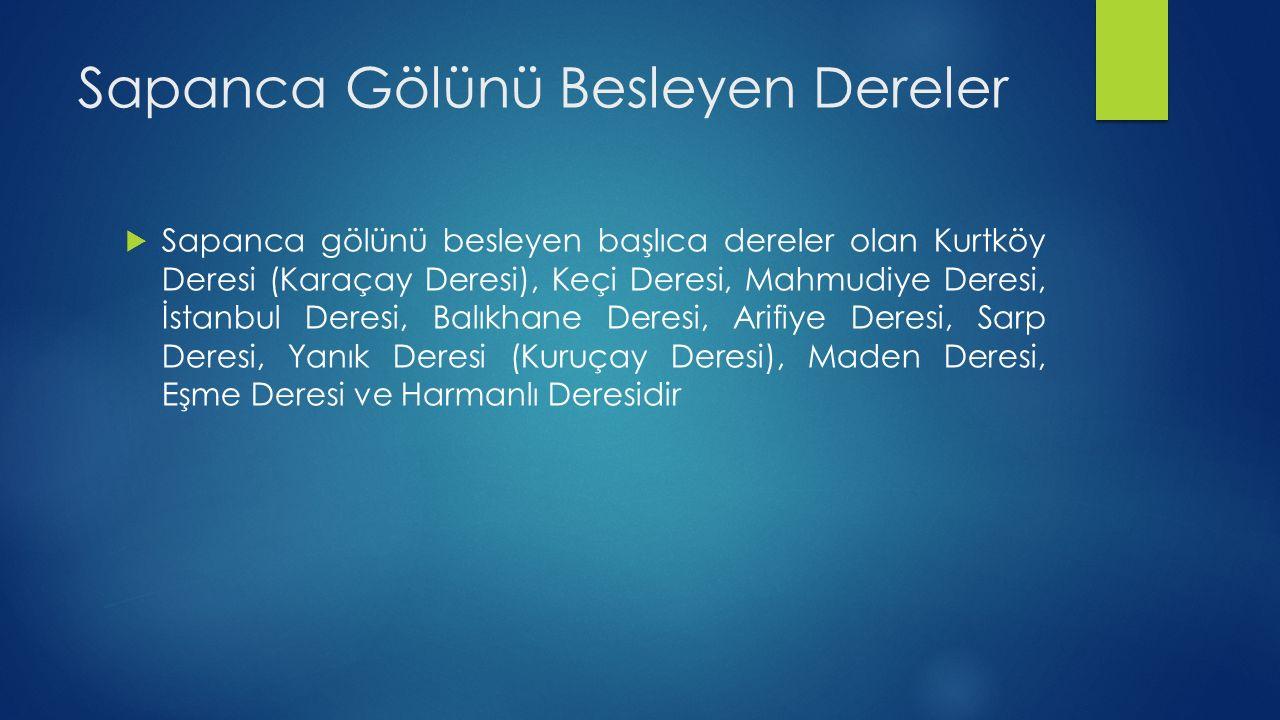 Sapanca Gölünü Besleyen Dereler  Sapanca gölünü besleyen başlıca dereler olan Kurtköy Deresi (Karaçay Deresi), Keçi Deresi, Mahmudiye Deresi, İstanbu