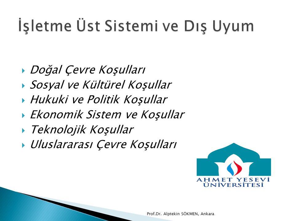  Doğal Çevre Koşulları  Sosyal ve Kültürel Koşullar  Hukuki ve Politik Koşullar  Ekonomik Sistem ve Koşullar  Teknolojik Koşullar  Uluslararası Çevre Koşulları Prof.Dr.
