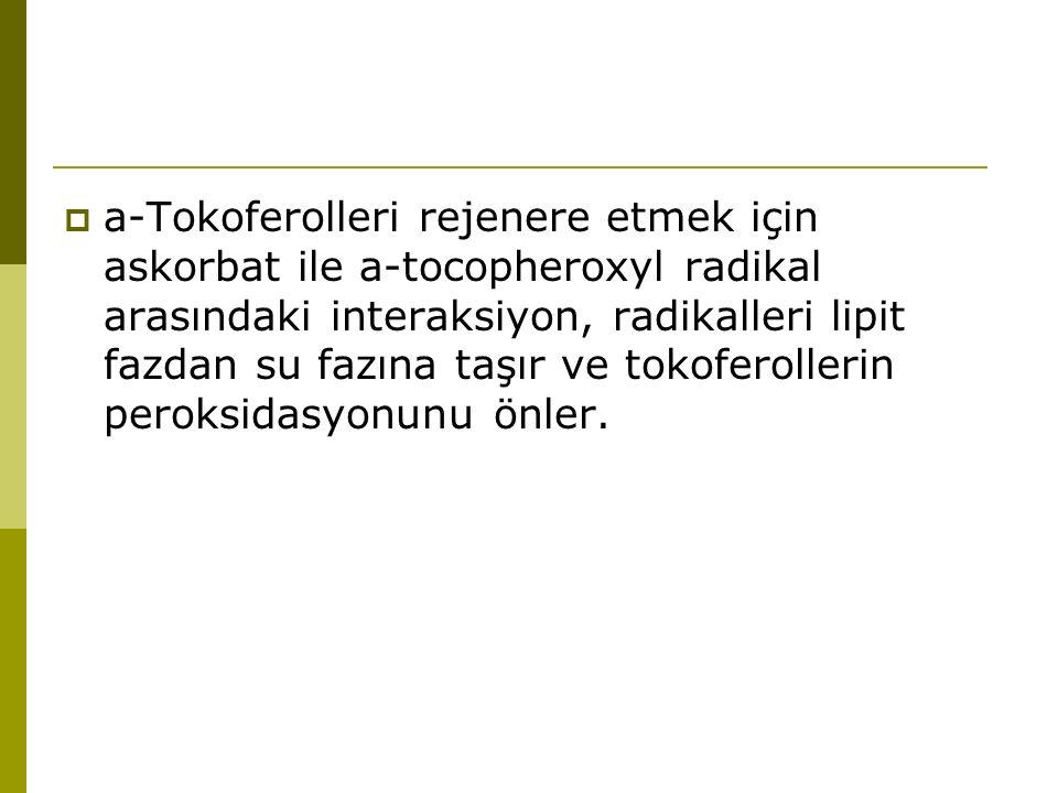  a-Tokoferolleri rejenere etmek için askorbat ile a-tocopheroxyl radikal arasındaki interaksiyon, radikalleri lipit fazdan su fazına taşır ve tokofer