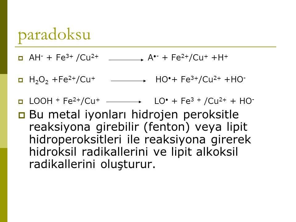paradoksu  AH - + Fe 3+ /Cu 2+ A - + Fe 2+ /Cu + +H +  H 2 O 2 +Fe 2+ /Cu + HO + Fe 3+ /Cu 2+ +HO -  LOOH + Fe 2+ /Cu + LO + Fe 3 + /Cu 2+ + HO - 