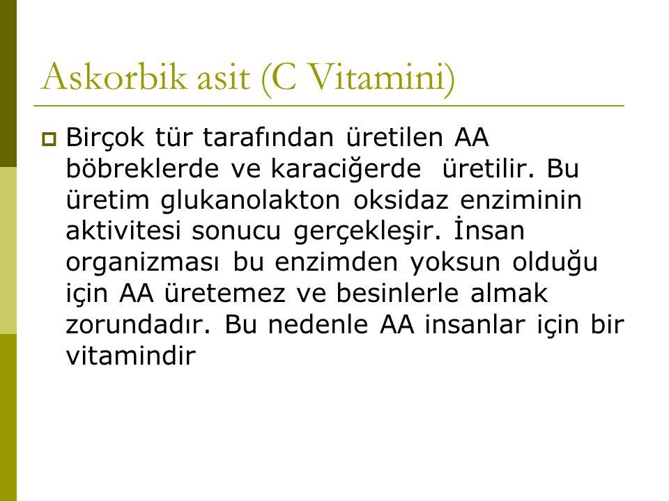 Askorbik asit (C Vitamini)  Birçok tür tarafından üretilen AA böbreklerde ve karaciğerde üretilir. Bu üretim glukanolakton oksidaz enziminin aktivite