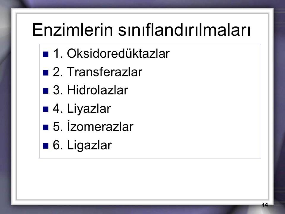 Enzimlerin sınıflandırılmaları 1. Oksidoredüktazlar 2. Transferazlar 3. Hidrolazlar 4. Liyazlar 5. İzomerazlar 6. Ligazlar 14