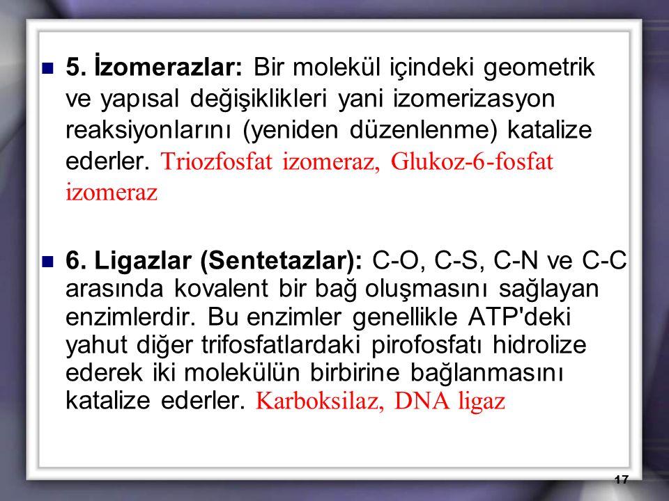 5. İzomerazlar: Bir molekül içindeki geometrik ve yapısal değişiklikleri yani izomerizasyon reaksiyonlarını (yeniden düzenlenme) katalize ederler. Tri