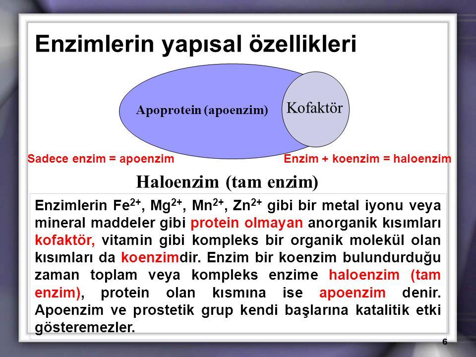 Enzimlerin yapısal özellikleri Kofaktör Apoprotein (apoenzim) Haloenzim (tam enzim) Enzimlerin Fe 2+, Mg 2+, Mn 2+, Zn 2+ gibi bir metal iyonu veya mi