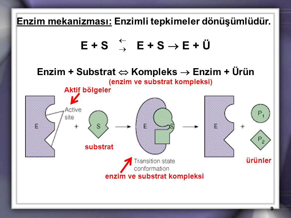 Enzim mekanizması: Enzimli tepkimeler dönüşümlüdür. E + S E + S  E + Ü Enzim + Substrat  Kompleks  Enzim + Ürün (enzim ve substrat kompleksi) 