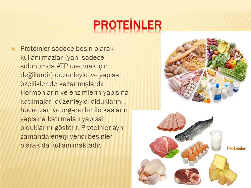  Proteinler sadece besin olarak kullanılmazlar (yani sadece solunumda ATP üretmek için değillerdir) düzenleyici ve yapısal özellikler de kazanmışlard