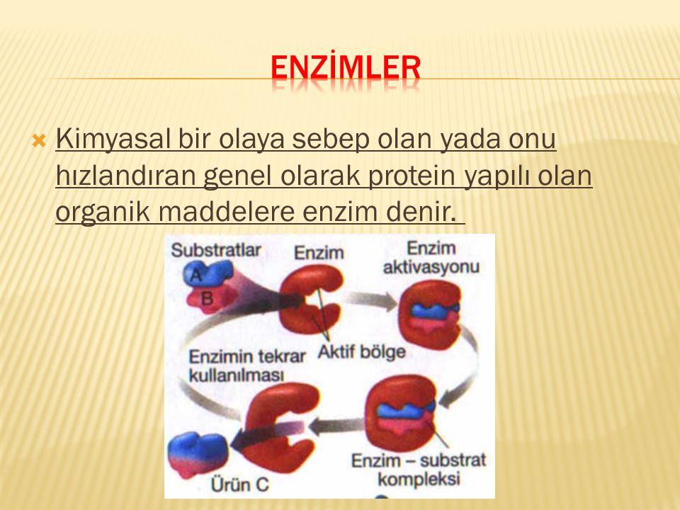  Kimyasal bir olaya sebep olan yada onu hızlandıran genel olarak protein yapılı olan organik maddelere enzim denir.