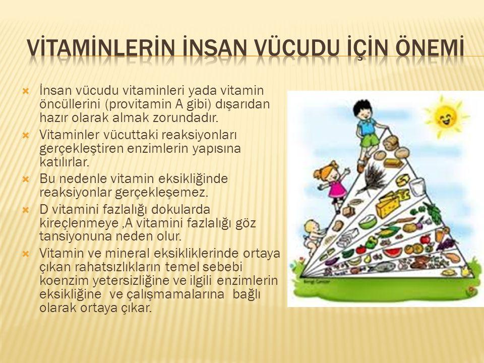  İnsan vücudu vitaminleri yada vitamin öncüllerini (provitamin A gibi) dışarıdan hazır olarak almak zorundadır.  Vitaminler vücuttaki reaksiyonları