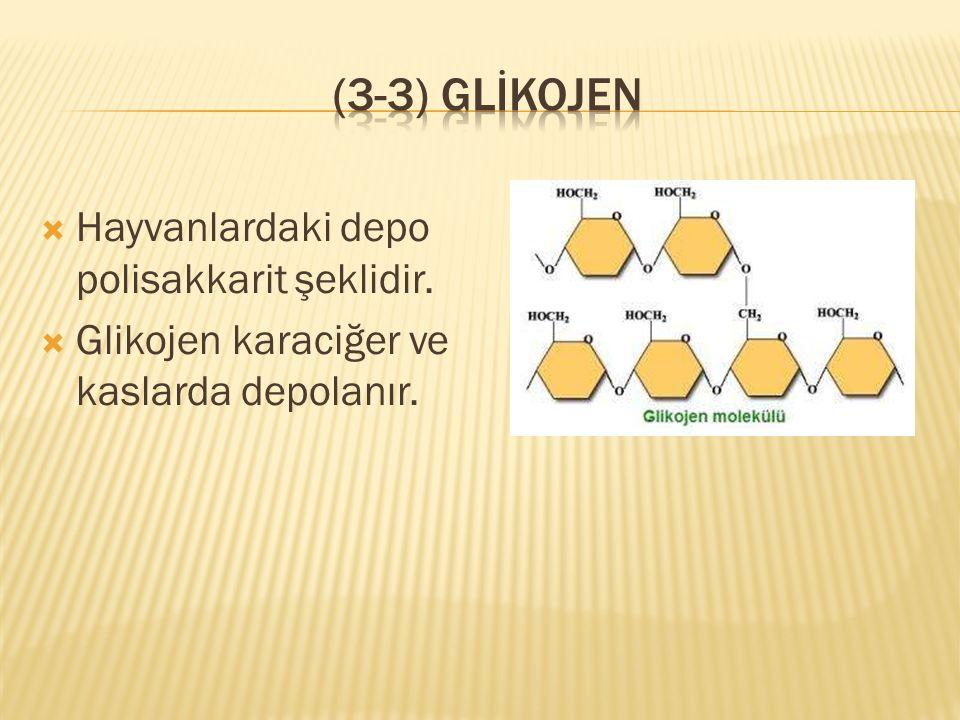  Çok sayıda glikozdan oluşan azotlu bir polisakkarittir.