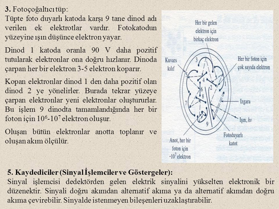 3. Fotoçoğaltıcı tüp: Tüpte foto duyarlı katoda karşı 9 tane dinod adı verilen ek elektrotlar vardır. Fotokatodun yüzeyine ışın düşünce elektron yayar
