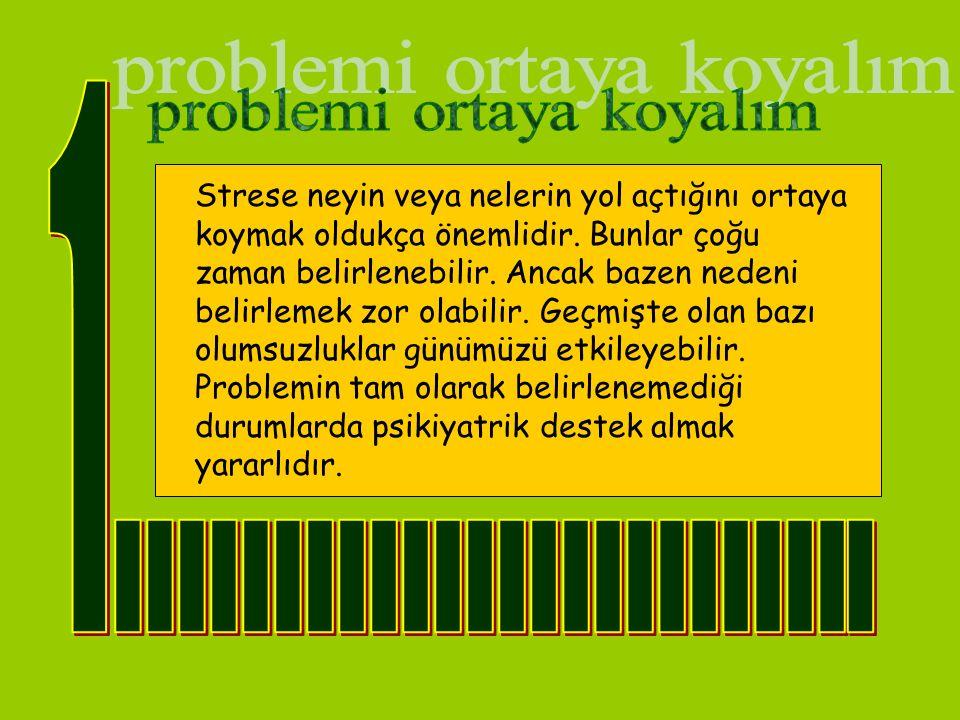 Problemin ne olduğu anlaşıldıktan sonra onunla mücadelede 2 yol vardır: problemi ortadan kaldır, kaldıramıyorsan onunla stressiz geçinme yollarını öğren.