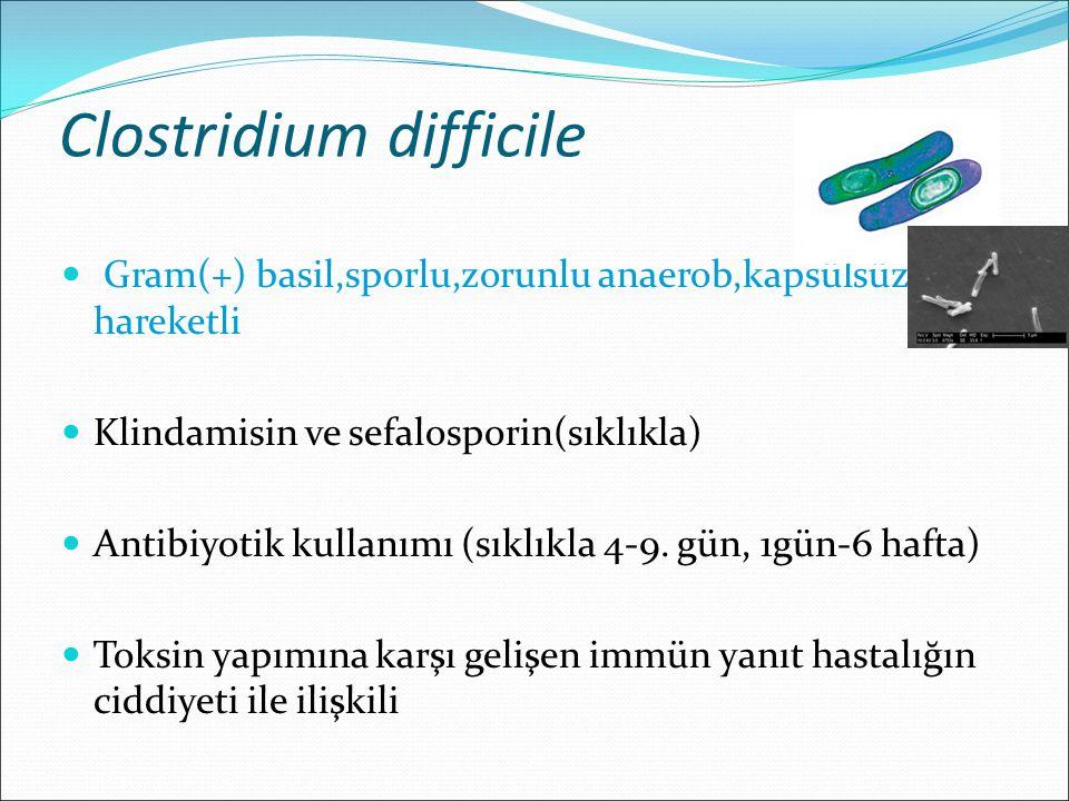 Clostridium difficile Gram(+) basil,sporlu,zorunlu anaerob,kapsülsüz,zayıf hareketli Klindamisin ve sefalosporin(sıklıkla) Antibiyotik kullanımı (sıkl