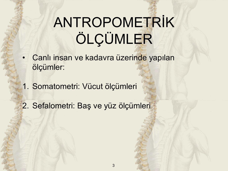3 Canlı insan ve kadavra üzerinde yapılan ölçümler: 1.Somatometri: Vücut ölçümleri 2.Sefalometri: Baş ve yüz ölçümleri ANTROPOMETRİK ÖLÇÜMLER