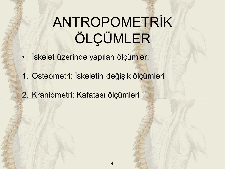 4 İskelet üzerinde yapılan ölçümler: 1.Osteometri: İskeletin değişik ölçümleri 2.Kraniometri: Kafatası ölçümleri ANTROPOMETRİK ÖLÇÜMLER