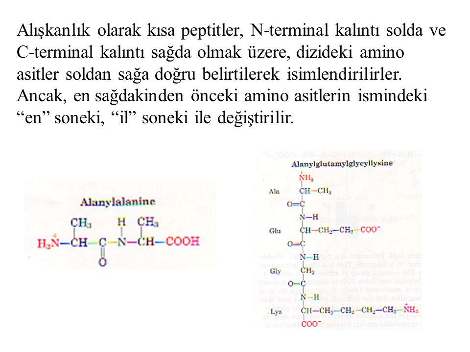 Alışkanlık olarak kısa peptitler, N-terminal kalıntı solda ve C-terminal kalıntı sağda olmak üzere, dizideki amino asitler soldan sağa doğru belirtile