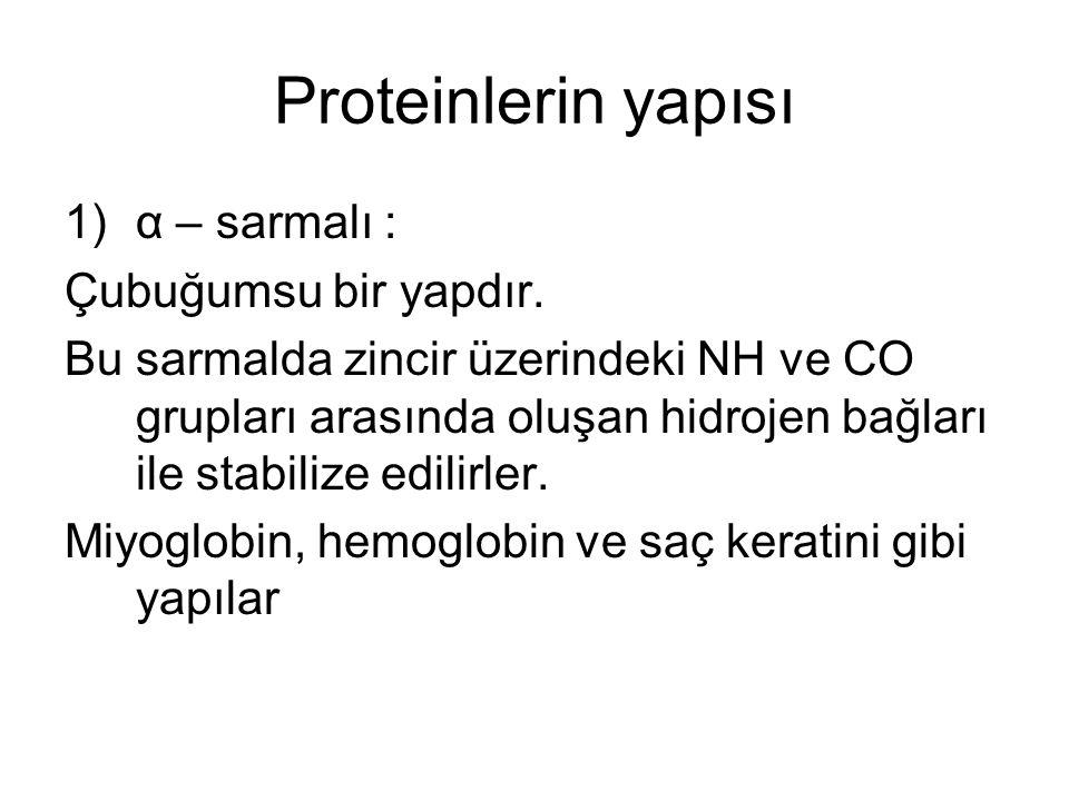 Proteinlerin yapısı 1)α – sarmalı : Çubuğumsu bir yapdır. Bu sarmalda zincir üzerindeki NH ve CO grupları arasında oluşan hidrojen bağları ile stabili
