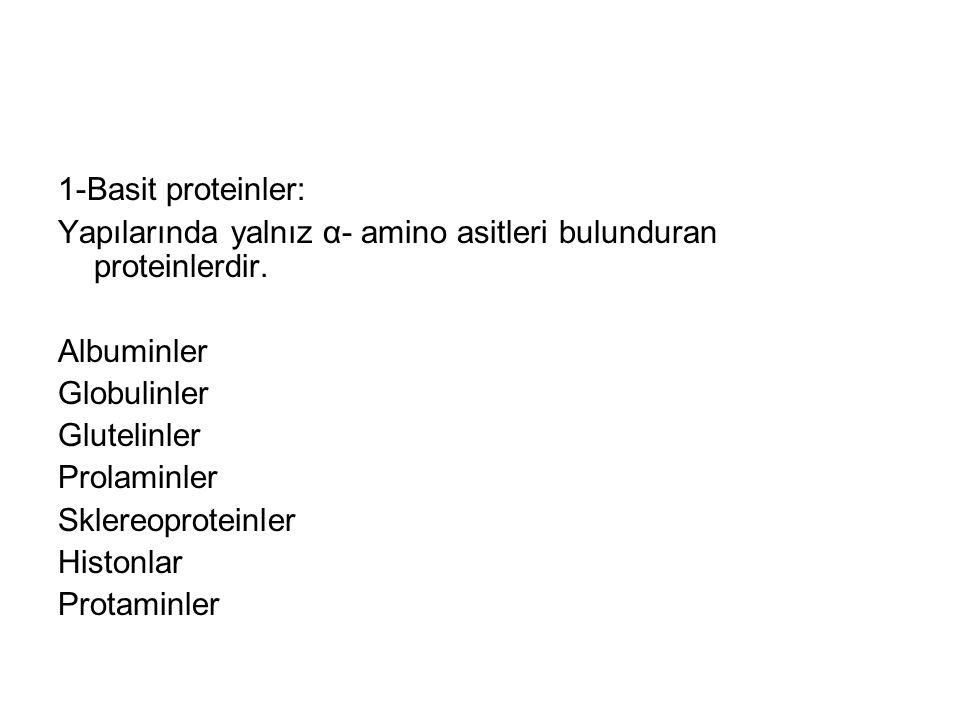 1-Basit proteinler: Yapılarında yalnız α- amino asitleri bulunduran proteinlerdir. Albuminler Globulinler Glutelinler Prolaminler Sklereoproteinler Hi