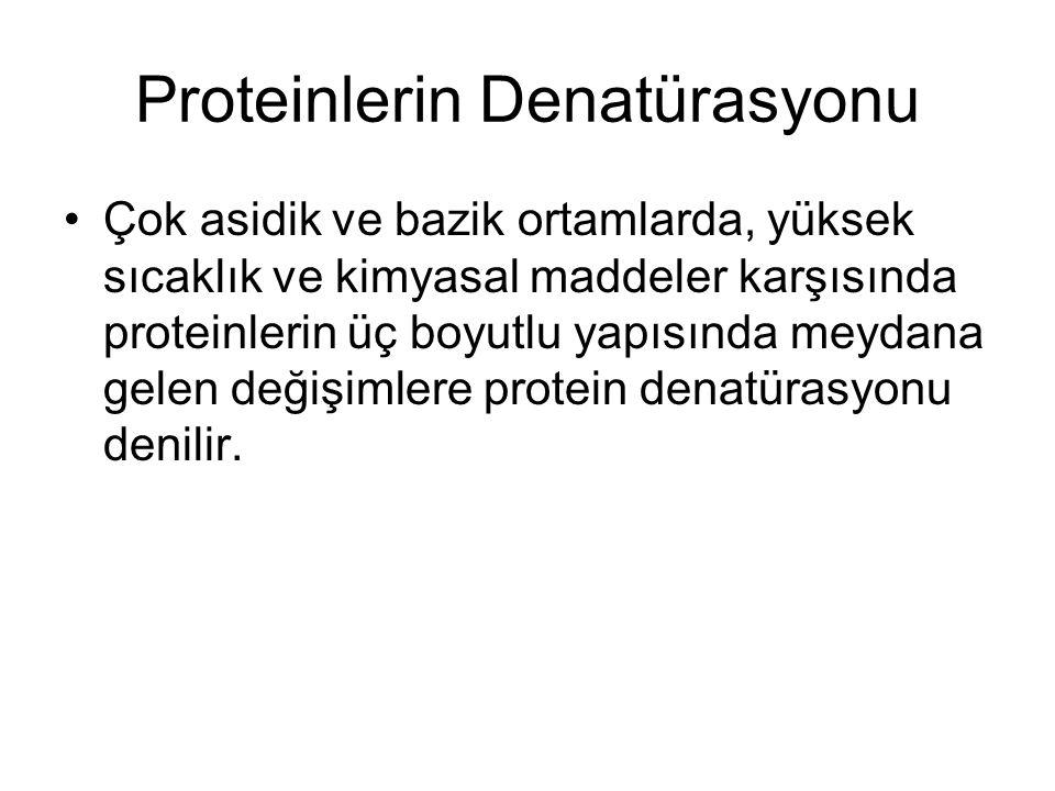 Proteinlerin Denatürasyonu Çok asidik ve bazik ortamlarda, yüksek sıcaklık ve kimyasal maddeler karşısında proteinlerin üç boyutlu yapısında meydana g