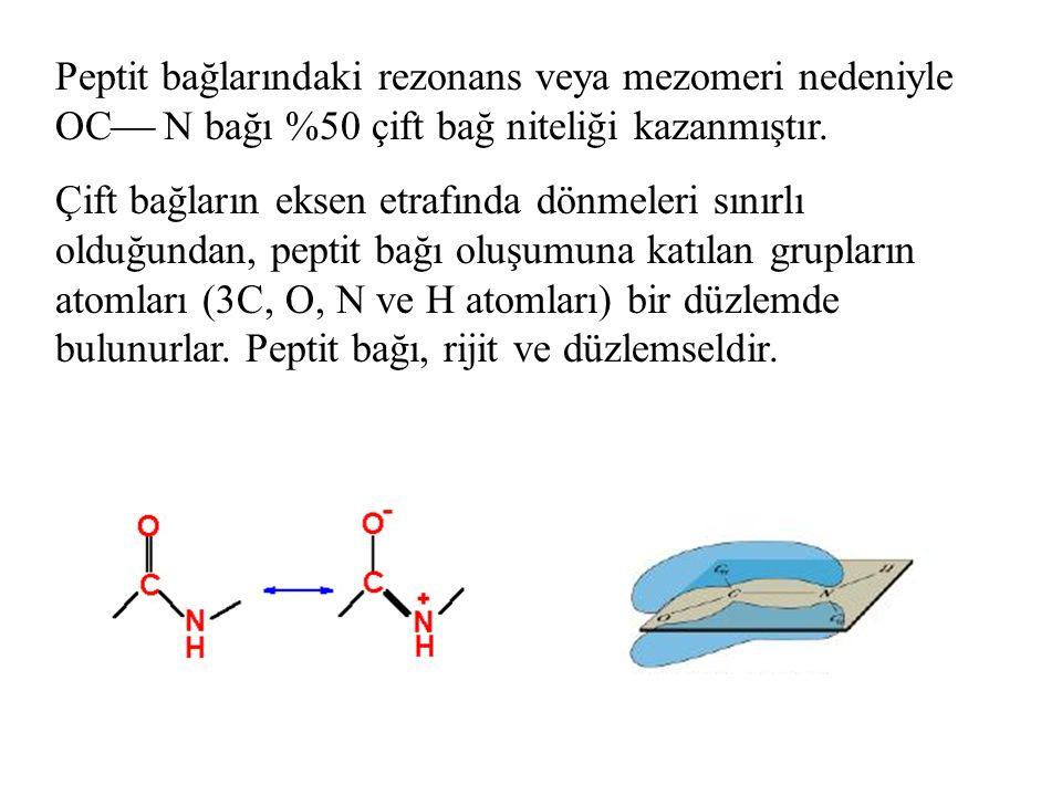 İki amino asitten dipeptit, Üç amino asitten tripeptit,… 10'a kadar olan amino asitten oligopeptit, daha çok amino asitten ise polipeptit meydana gelir.