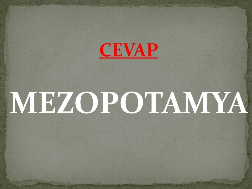 CEVAP MEZOPOTAMYA