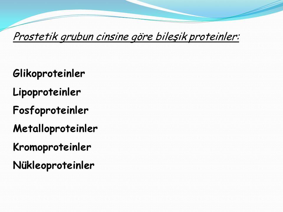 Prostetik grubun cinsine göre bileşik proteinler: Glikoproteinler Lipoproteinler Fosfoproteinler Metalloproteinler Kromoproteinler Nükleoproteinler