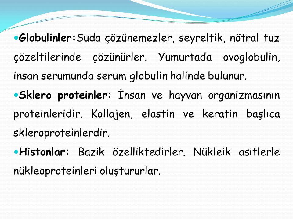 Globulinler:Suda çözünemezler, seyreltik, nötral tuz çözeltilerinde çözünürler. Yumurtada ovoglobulin, insan serumunda serum globulin halinde bulunur.