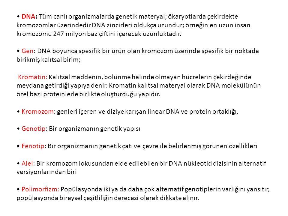 DNA: Tüm canlı organizmalarda genetik materyal; ökaryotlarda çekirdekte kromozomlar üzerindedir DNA zincirleri oldukça uzundur; örneğin en uzun insan kromozomu 247 milyon baz çiftini içerecek uzunluktadır.