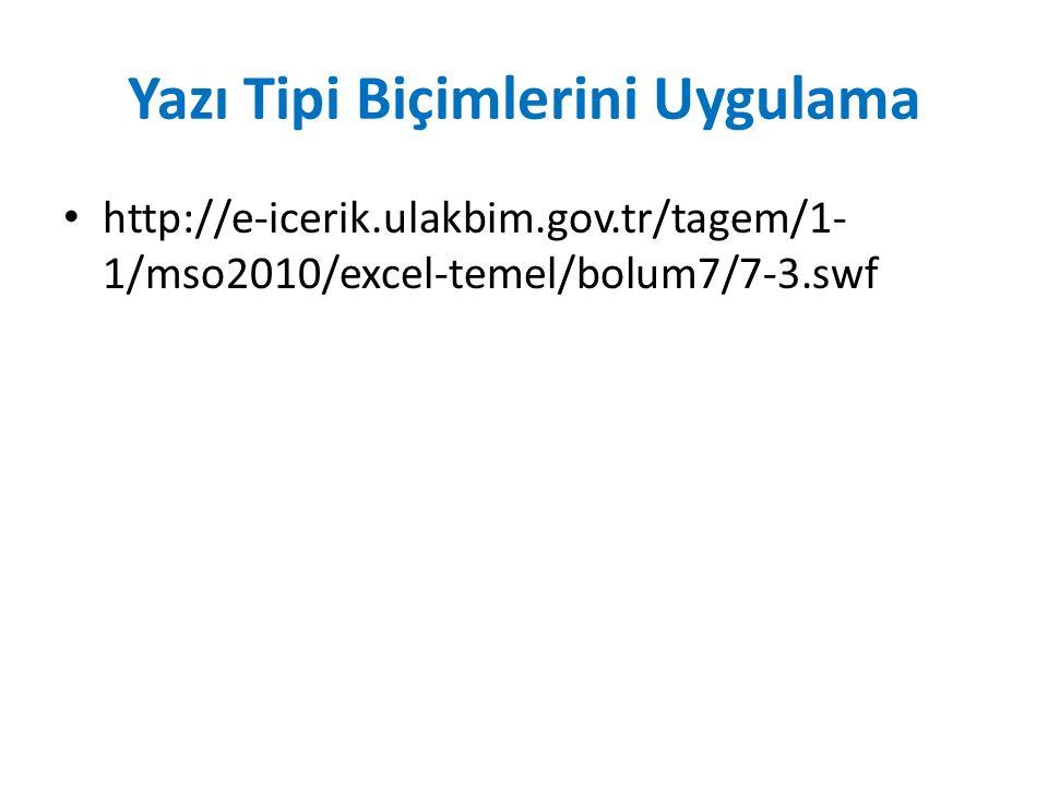 Yazı Tipi Biçimlerini Uygulama http://e-icerik.ulakbim.gov.tr/tagem/1- 1/mso2010/excel-temel/bolum7/7-3.swf