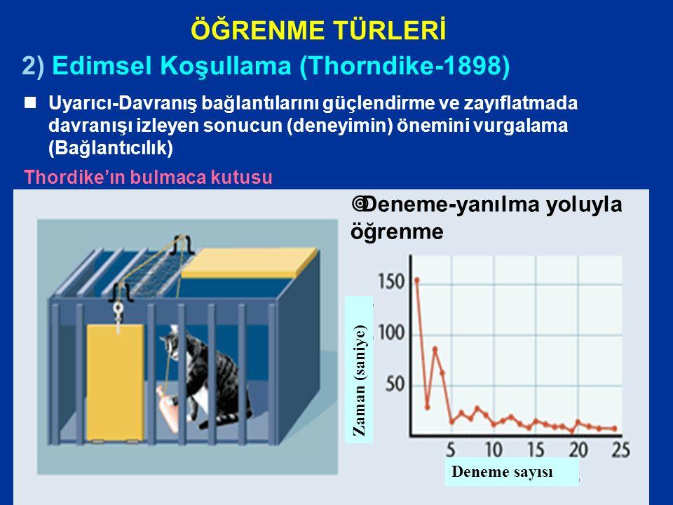 ÖĞRENME TÜRLERİ 2) Edimsel Koşullama (Thorndike-1898) nUyarıcı-Davranış bağlantılarını güçlendirme ve zayıflatmada davranışı izleyen sonucun (deneyimin) önemini vurgalama (Bağlantıcılık) Thordike'ın bulmaca kutusu Zaman (saniye) Deneme sayısı  Deneme-yanılma yoluyla öğrenme